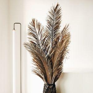 Dried Palm Leaf Decor (LARGE)